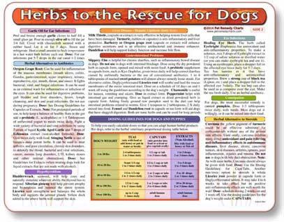 Herbal treatment chart for dogs and dosing guide.
