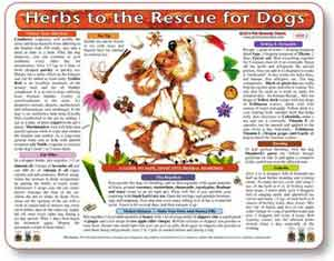 Herbal Medicine Treatment Chart for Dogs.