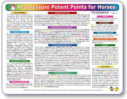 The horse acupressure chart, enables you to locate the ailment, the points and the treatment almost instantly.