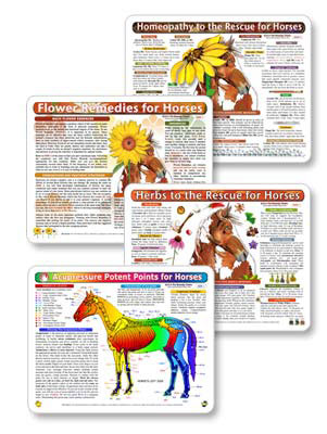 Herbs, homeopathy, flower remedies and acupressure treatments for horses.