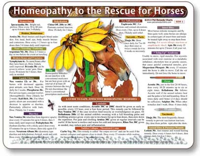 Equine homeopathy, dose and potency guidelines for horses.