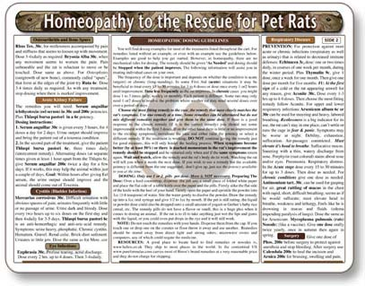 How to Give Homeopathy to Pet Rats