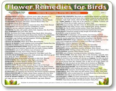 Flower Remedy Treatment Chart for Birds