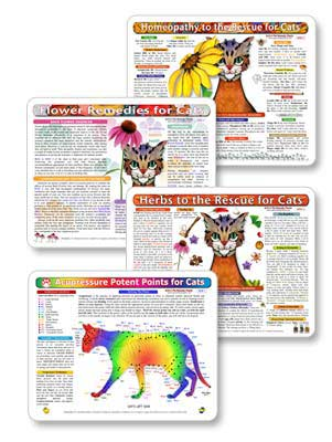Herbs, homeopathy, flower remedies and acupressure treatments for cats, to help you individualize and speed up the healing process.