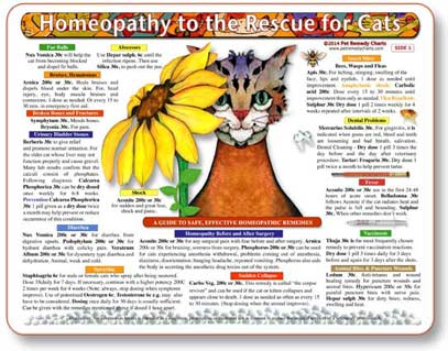 Homeopathic treatment guide for cats.