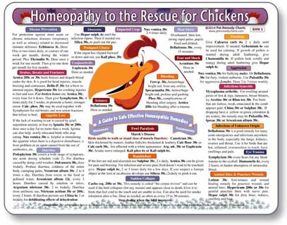 Homeopathic Remedies for Pet Chickens