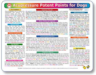 Canine acupressure points chart.