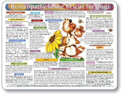 How to give dogs homeopathic remedies.