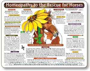 Homeopathic remedies for horses chart.