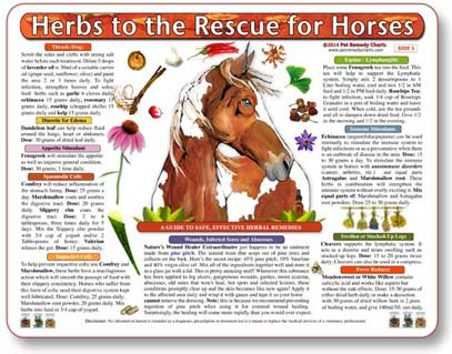 Herbal treatment and dosage guide for horses.