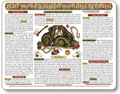 Herbal Medicine for Pet Rats